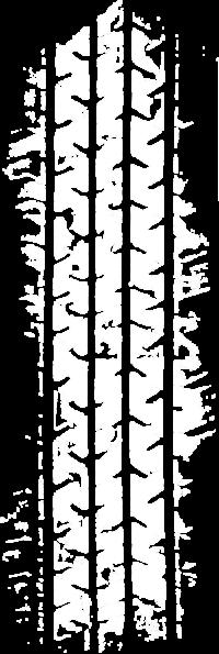 光輪タイヤ